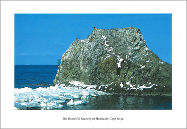オジロワシの見張台となる豊岩 (宗谷岬東南海岸)