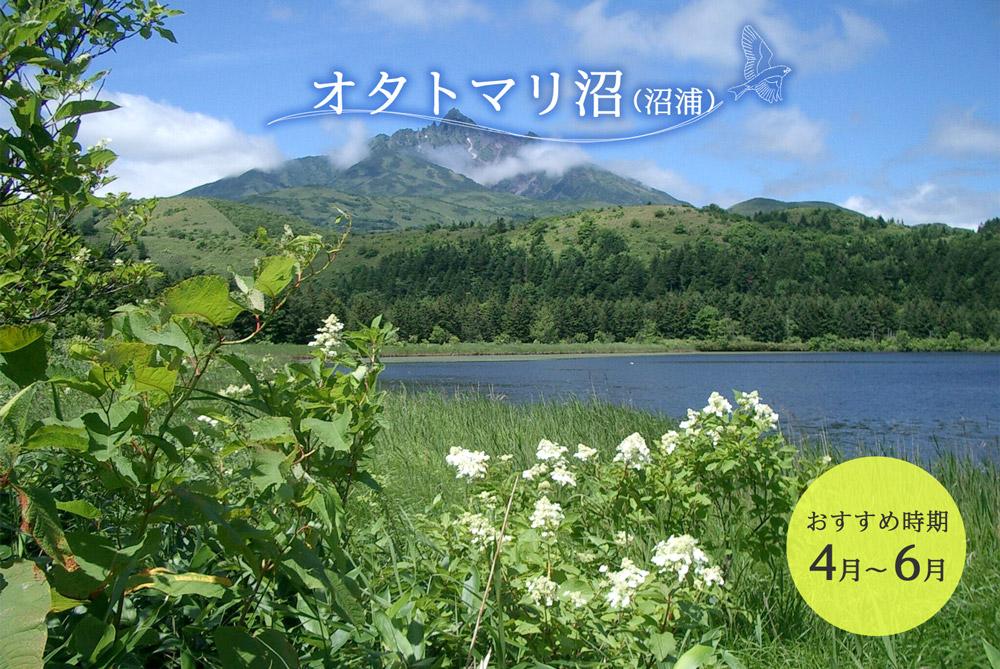 オタトマリ沼(沼浦)