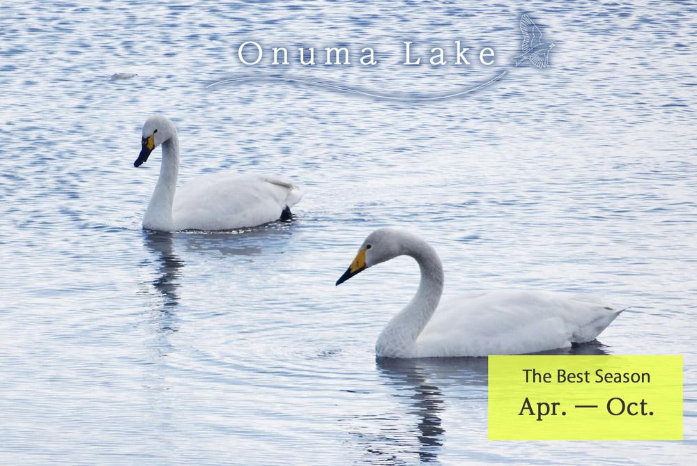 Onuma Lake