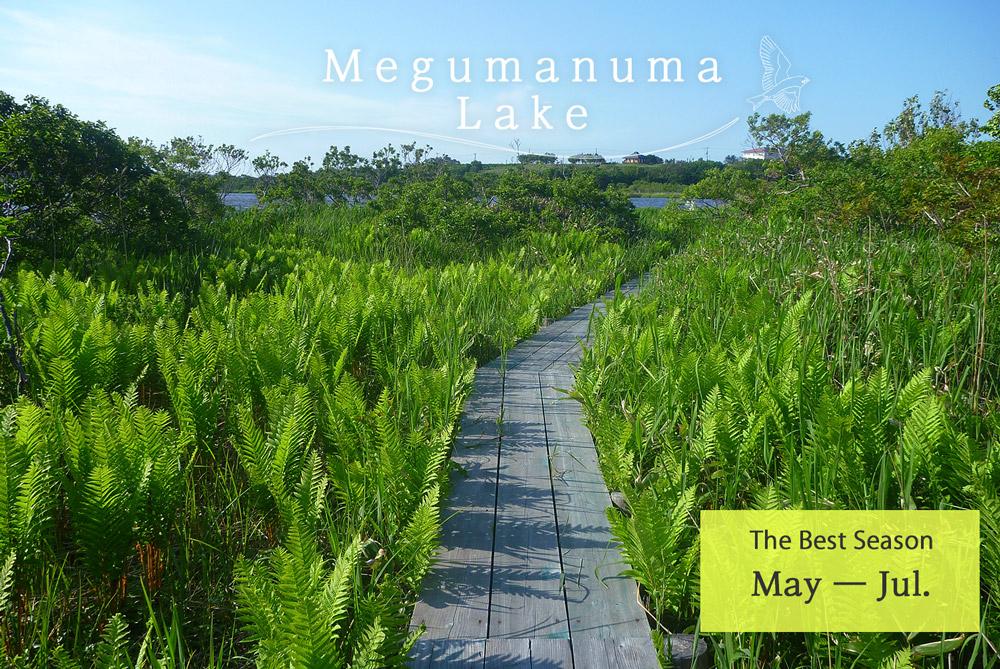 Megumanuma Lake