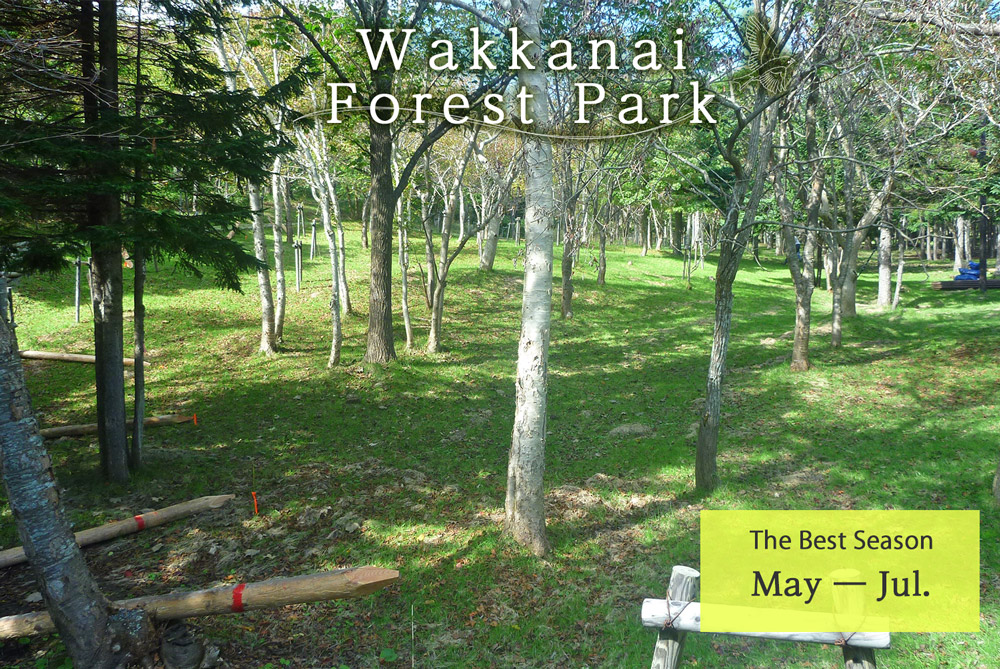 Wakkanai Forest Park