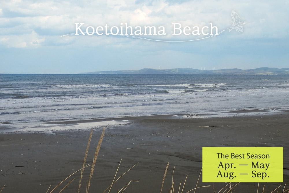 Koetoihama Beach