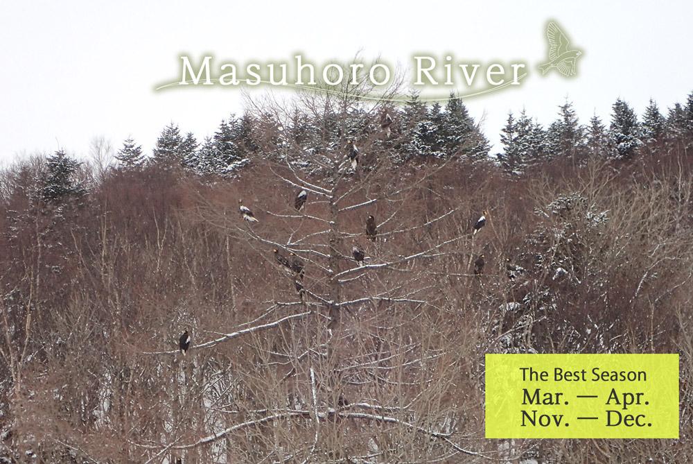 Masuhoro River