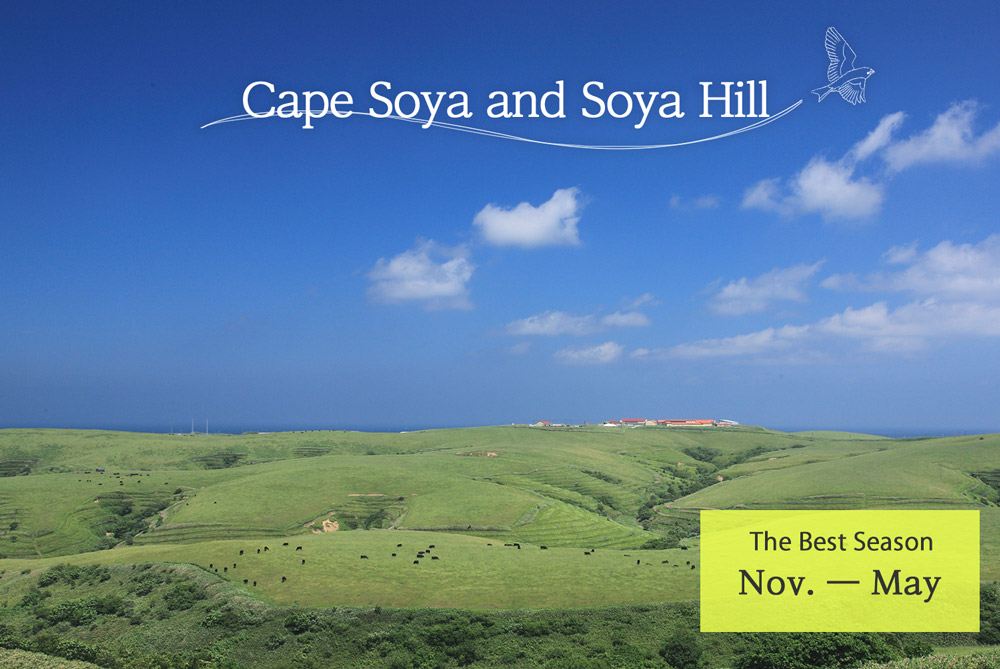 Cape Soya and Soya Hill